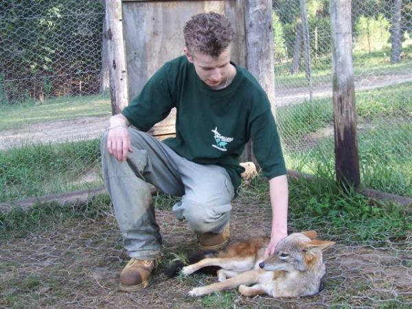 Volunteer at a wildlife sanctuary in South Africa
