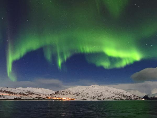 Northern Lights and whale watching vacation in Norway