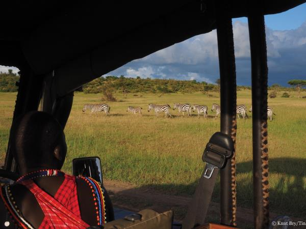 Great Migration experience with the Maasai, Kenya
