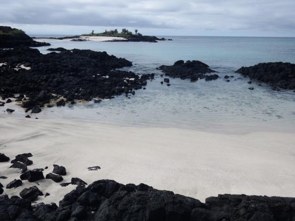 Floreana Island wildlife tour, Galapagos Islands