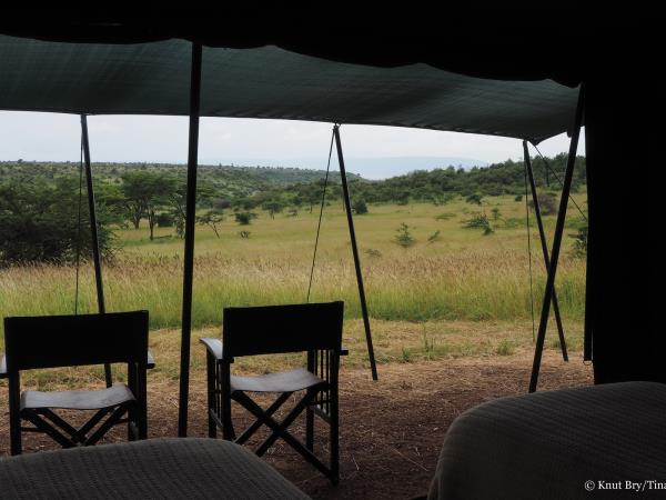 Masai Mara walking safari, 4 days