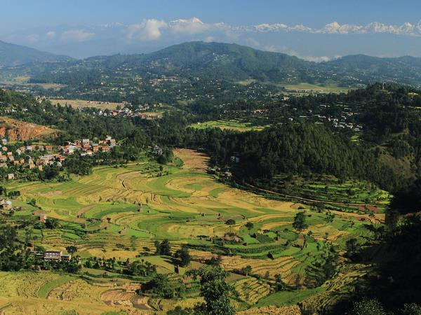 Nepal trek with Chitwan National Park safari