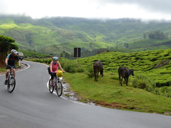 Cycling vacations in Kerala