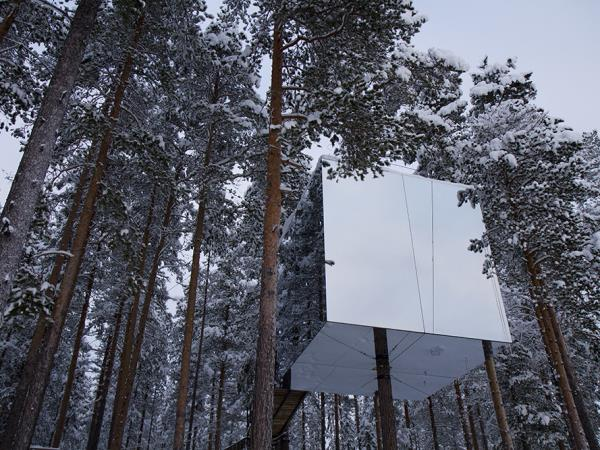 Treehotel and Northern Lights vacation, Sweden