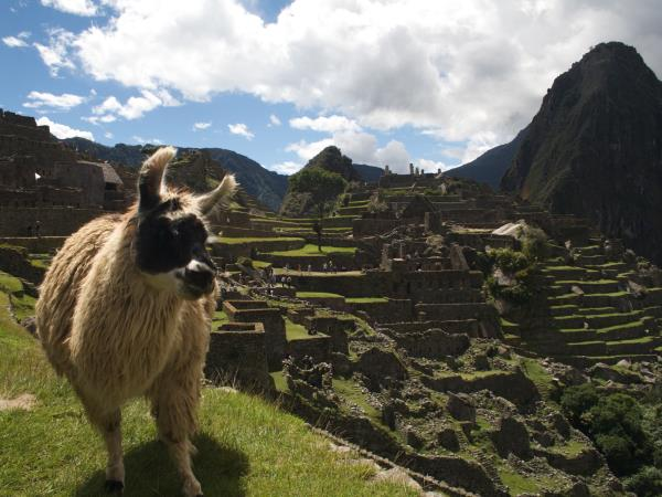 Tailormade vacation in Peru