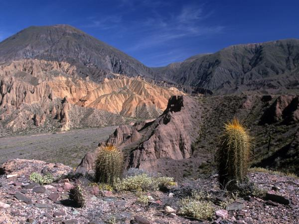 Argentina tour, Salta and Jujuy