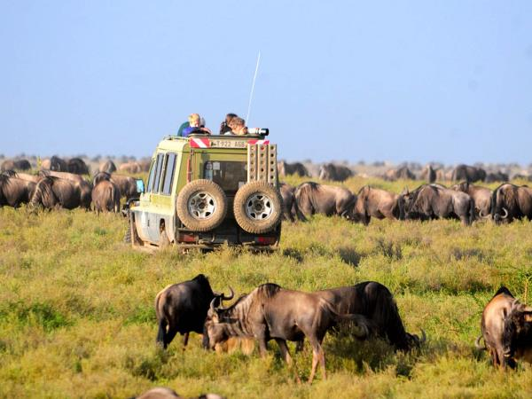 Tanzania national parks safari vacation