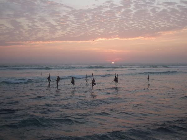 Complete tour of Sri Lanka, tailor made