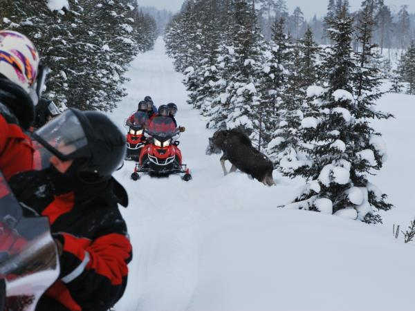 Finnish Lapland vacation, Luosto activity week