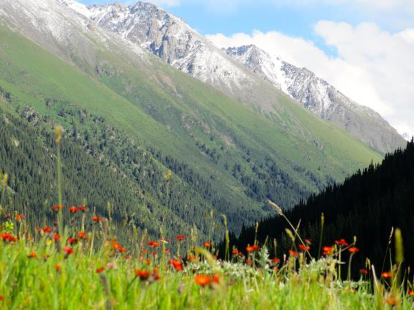 Krygyzstan vacation, tailor made adventure