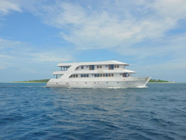 Liveaboard diving vacation in Maldives