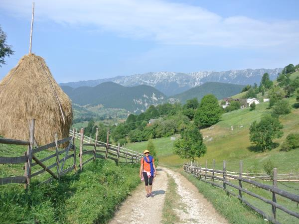 Romania wildlife and walking vacation
