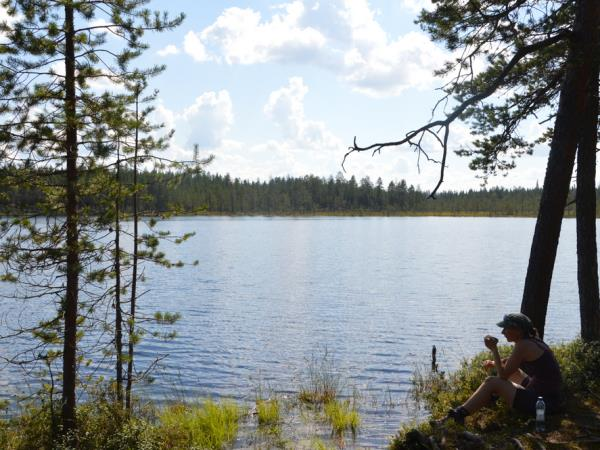 Wild Taiga self drive vacation in Finland, Finnish National Parks
