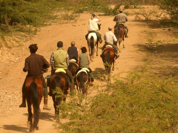 Horse riding tour in Rajasthan, India