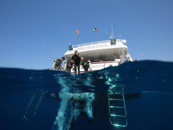 Red Sea diving & yacht charter vacation, Jordan