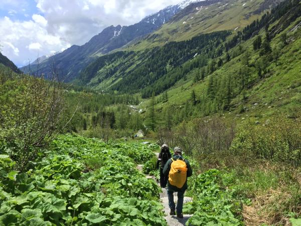 Mindfulness & nature vacation in Austria