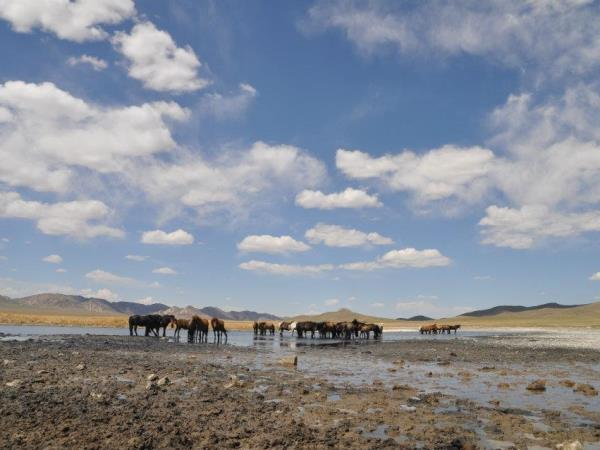 Mongolia adventure tour, Gobi explorer