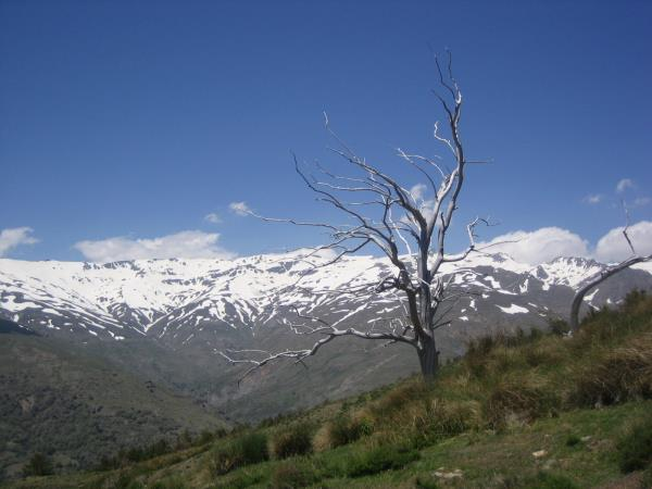 Las Alpujarras hiking vacation, Spain