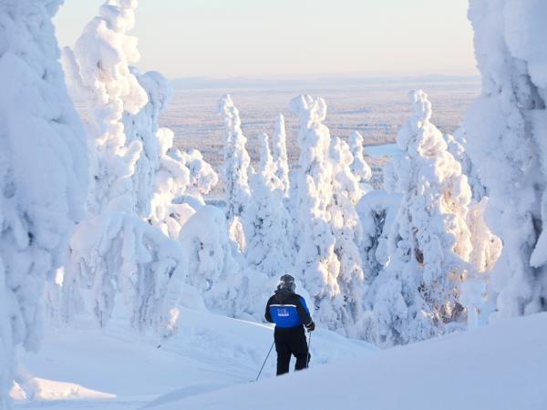 Finnish Lapland activity vacation
