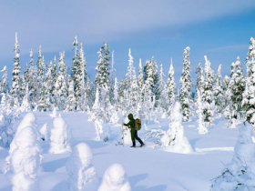 Lapland family winter adventure vacation