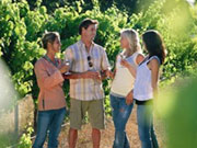Group tasting at Amberley Estate, Western Australia. Photo by Tourism Western Australia
