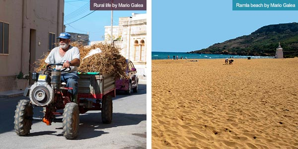Rural life and Ramla Bay, Gozo. Photos by xxx