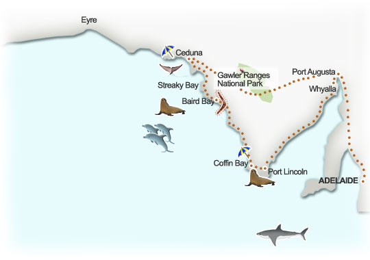 Eyre Peninsula suggested itinerary, South Australia. Illustration by Lisa Joanes
