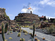 Windmill at Jardin de Cactis, Lanzarote. Photo by Lanzarote Tourist Board