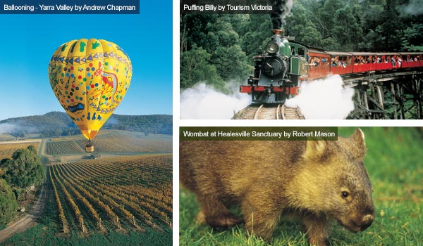 Ballooning, Puffing Billy Steam Railway and a wombat, Victoria. Photos from Victoria Tourist Board